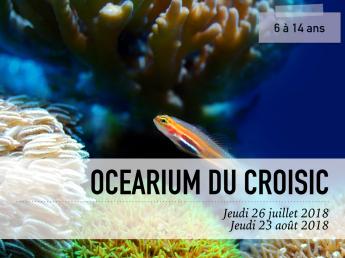 Visuel Océarium du Croisic
